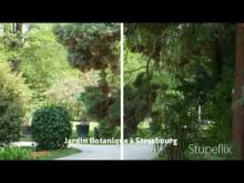 Jardin Botanique de Strasbourg en vidéo