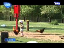 Parc Hérouval en vidéo