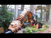 Les Machines de l'île en vidéo