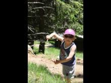 Parc animalier de Merlet en vidéo