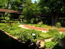 Parc Floral de Paris en vidéo